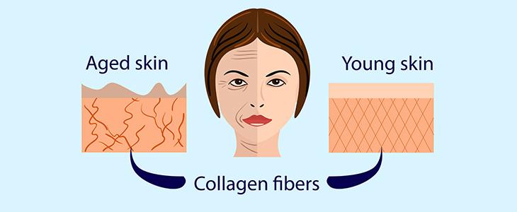 Колаген - какво трябва да знаем